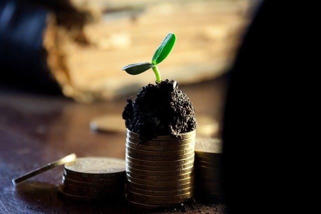 Significant Profit Factors